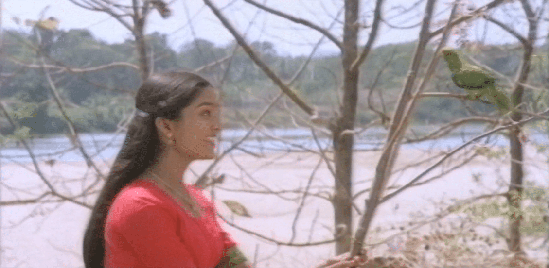 Panchavarna Painkili Penne Lyrics