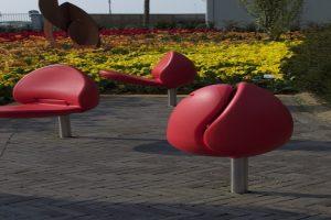 tulips 4 960x540